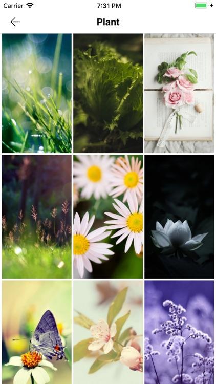 Wallpaper Styles screenshot-3