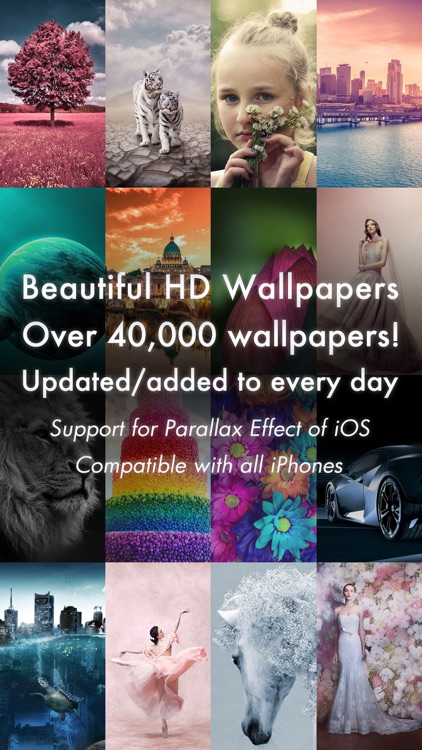 Beautiful HD Wallpapers 40000+