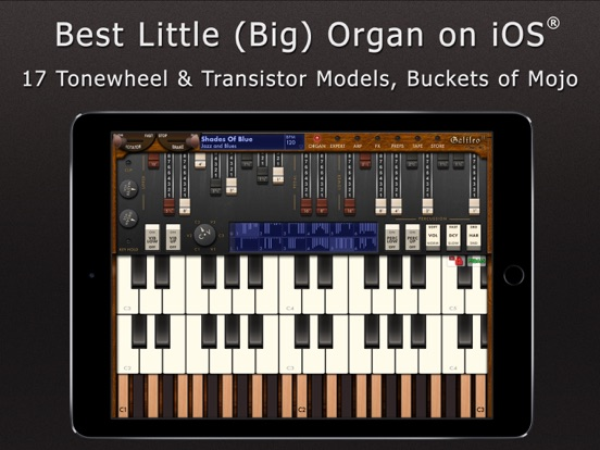 Galileo Organ 2 screenshot 6