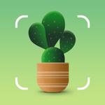 NatureID: Определение растений на пк