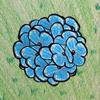Tyler Helmrich - Gentle Backyard artwork