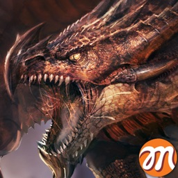 CrazyDragon : Global