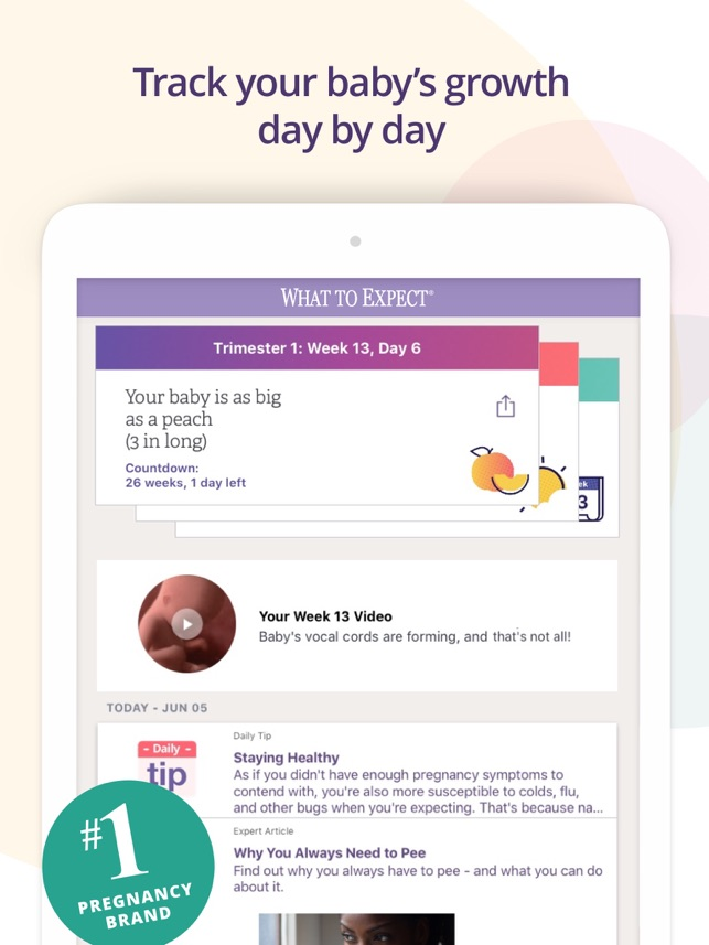 day by day pregnancy tracker
