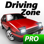 Driving Zone: Japan Pro