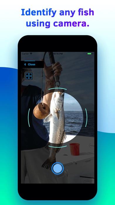 Fish Identifier screenshot 1