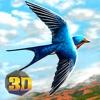 Swallow Bird Simulator 3D