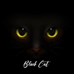Cute Black Cat Stickers Pack