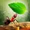 App Icon for Little Ant Colony - Idle Game App in United States IOS App Store