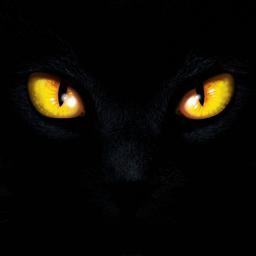 Ícone do app Blackout: The Darkest Night