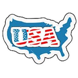 USA Icon Sticker