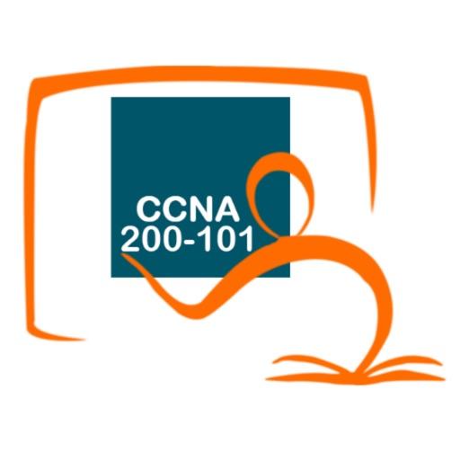 CCNA 200-101 ICND2 Exam Online