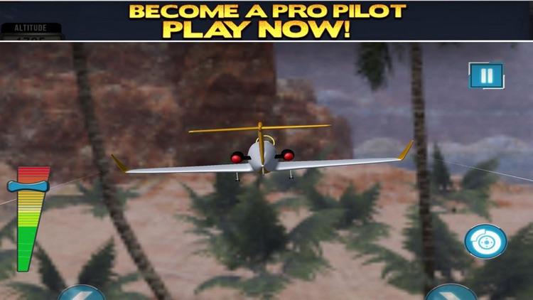 Airplane Flying Stunts: Flight