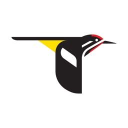 Merlin Bird ID par Cornell Lab