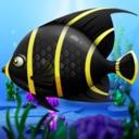Frenzy Piranha Fish World