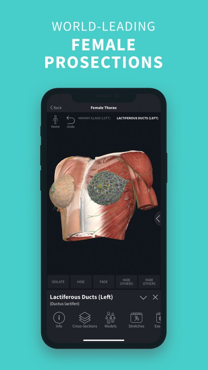 Complete Anatomy '22 screenshot-5