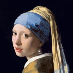 Johannes Vermeer's Art