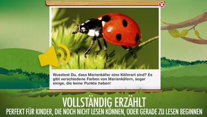 Die Käfer I: Insekten?Screenshot von 6