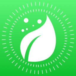 Plant Finder Tree identifer