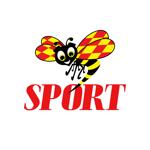 SportExpressen на пк
