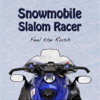 Procypher Software Co. - Snowmobile Slalom Racer artwork