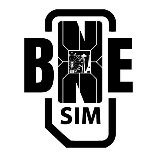 BNESIM International Voip calls, Free Roaming, DID