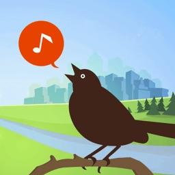 Chirp! Bird Songs USA +