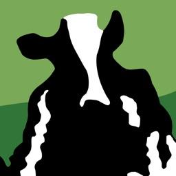 Talking Rubin the Cow