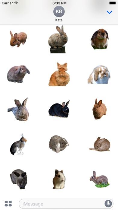 Kaninchen FotoaufkleberScreenshot von 3