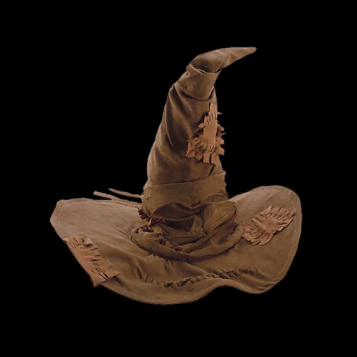 A Sorceror's Hat Decision Maker for Fun Sorting