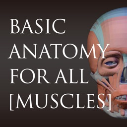 basic anatomy for all [muscles]