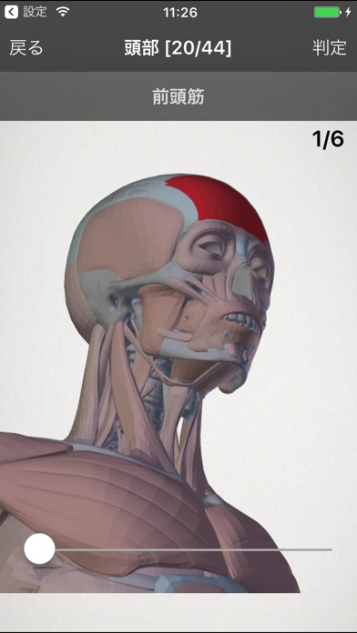 らくらく解剖学[筋肉] screenshot1