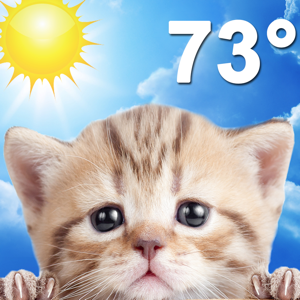 Weather Kitty Weather app