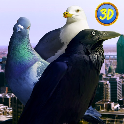 City Birds Simulator Full