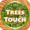 Trees Quiz Touch :: T...