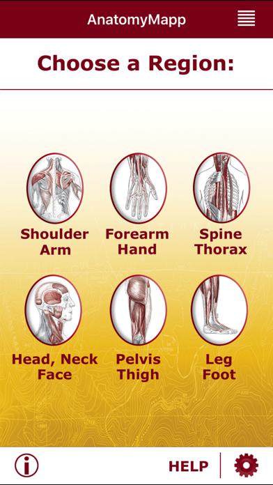 AnatomyMappのおすすめ画像1