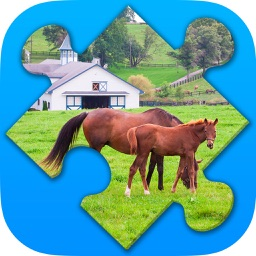 Farm Puzzles. New jigsaw puzzles