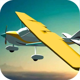Airplane Flight Pilot Simulation -  3D Flying