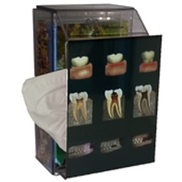 Dental Pain Lite