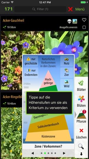botanist teneriffa im app store. Black Bedroom Furniture Sets. Home Design Ideas