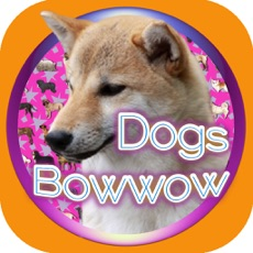 Activities of Dogs Quiz Bowwow Touch : Simple Game with 109 Dogs