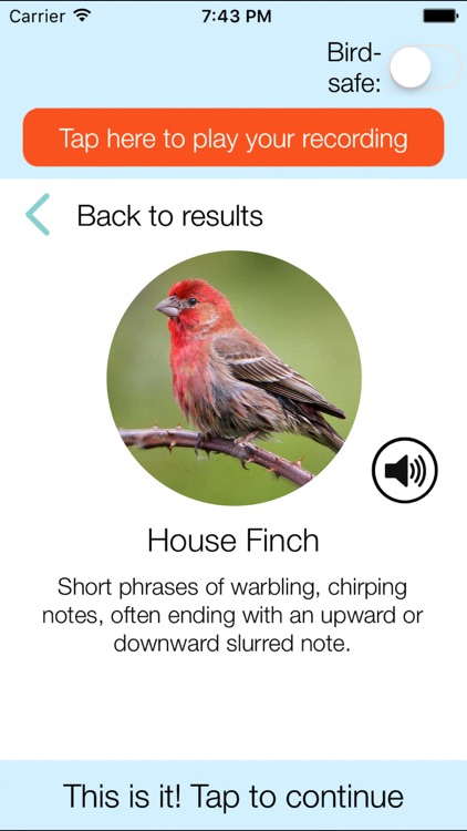ChirpOMatic USA, Automatic Bird Song Recognition
