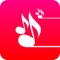 Backing Tracks Creator Pro is easy to use, sounds excellent and makes lots of fun