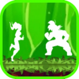 Shadow of dragon fighter
