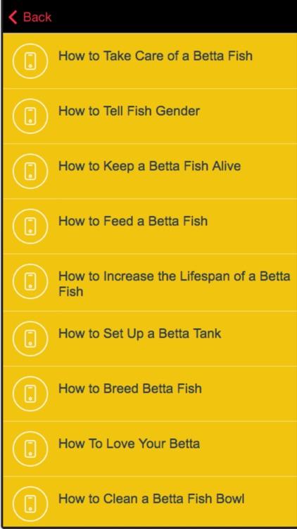 Betta Fish Care - Tips for Raising a Healthy Betta