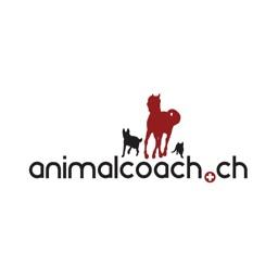 Dog Training School Animalcoach.ch Zurich