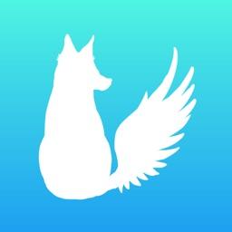 White Fox For Twitter By Yusuke Matsukawa