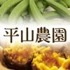 種子島から産直!安納芋など新鮮野菜のお取り寄せなら|平山農園