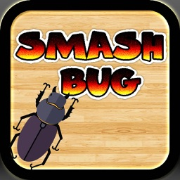 Smash Bugger