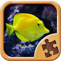 Codes for Cool Fish Jigsaw Puzzles - Fun Logical Games Hack