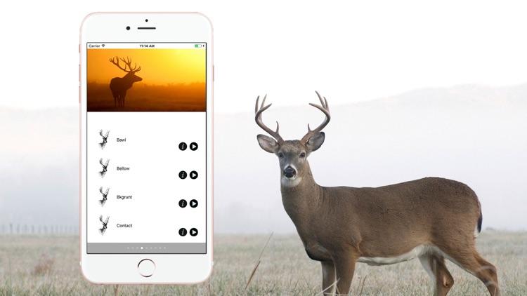 Hunting Calls Full screenshot-3